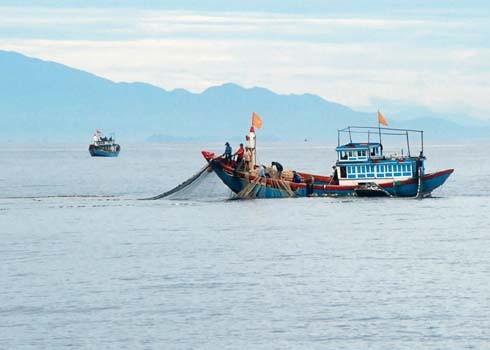 Ngư dân đánh bắt cá trên vùng biển đảo Lý Sơn (Quảng Ngãi). Ảnh: Trí Tín