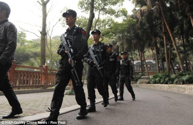 Cảnh sát cũng được huy động để vây bắt sư tử