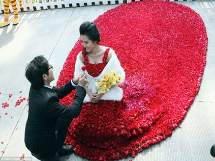 Chàng trai quỳ xuống cầu hôn cô gái