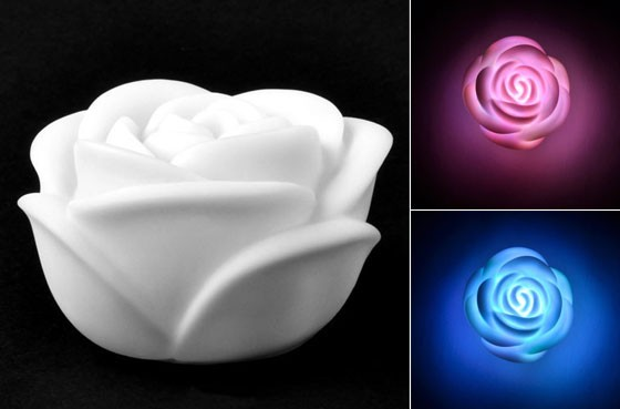 Hoa hồng độc đáo cho ngày Valentine - ảnh 16