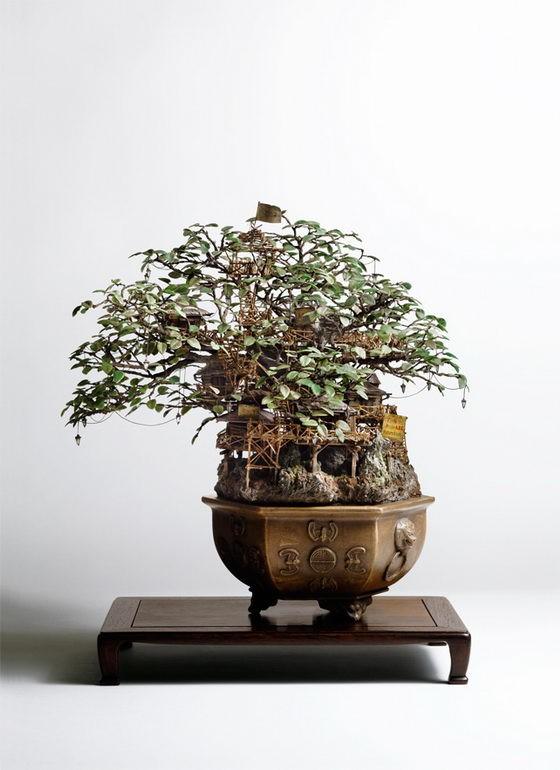 Những lâu đài 'khủng' trên cây bonsai - ảnh 4