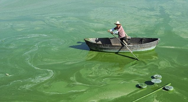 Trung Quốc khủng hoảng vì ô nhiễm môi trường - ảnh 1