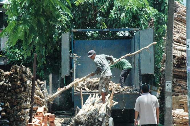 Giữa trưa, những công nhân bốc xếp vẫn tiếp tục công việc tháo dỡ các cây gỗ