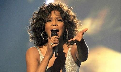 Phát hiện có nước trong phổi Whitney Houston - ảnh 1
