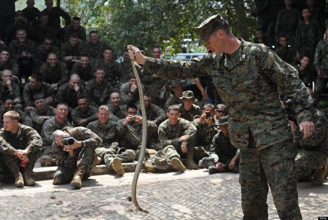 Lính Mỹ luyện uống máu rắn, ăn côn trùng - ảnh 6
