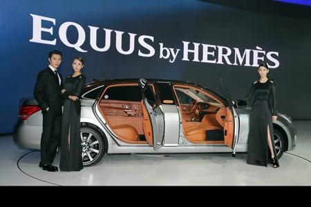 Đẳng cấp thời trang Hermes trên Hyundai Equus - ảnh 5