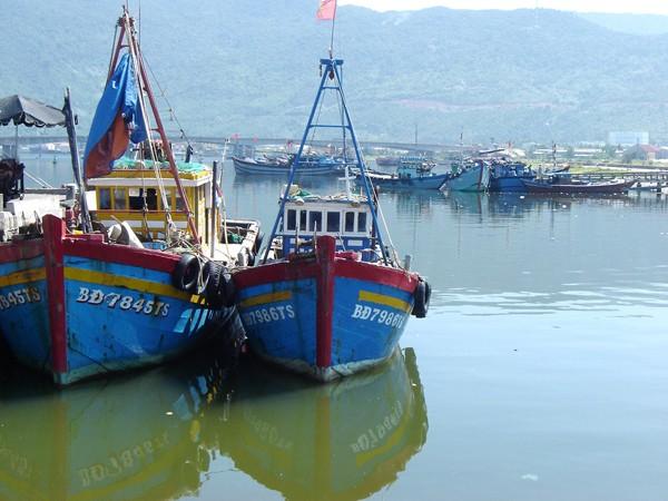 Âu thuyền Thọ Quang-một địa chỉ ô nhiễm nguồn nước giờ đã được giải quyết. Ảnh: Nam Cường