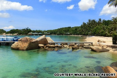 Khu nghỉ dưỡng Whale Island