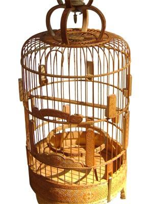 Chiếc lồng chim trị giá 10 triệu đồng