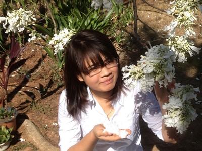 Phượng trắng trong vườn nhà số 9, Phù Đổng Thiên Vương, TP Đà Lạt