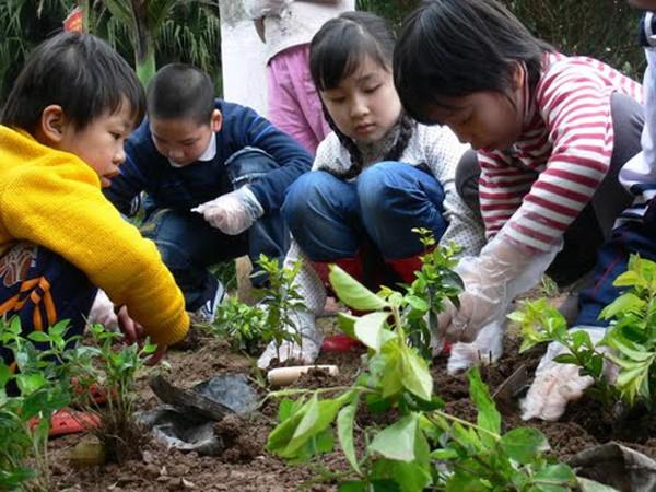 Học sinh trồng cây trong chương trình trại cuối tuần của 4T