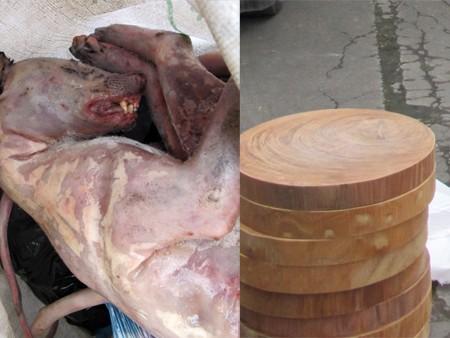 Cầy hương và thớt nghiến bị cơ quan chức năng phát hiện trên xe khách từ Hà Nội lên Lạng Sơn sáng 29-3