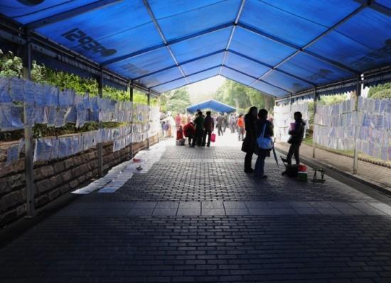 Cha mẹ đến 'chợ tình' kiếm bạn đời cho con - ảnh 3