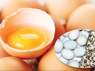 Ăn trứng nào tốt cho sức khỏe? - ảnh 1