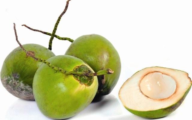 Dừa – giải nhiệt, trị nhiều bệnh - ảnh 2