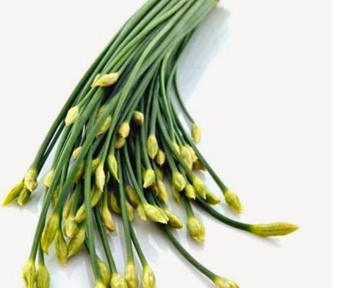 5 công dụng tuyệt vời của loại rau 'rẻ như cho' ở Việt Nam - ảnh 1