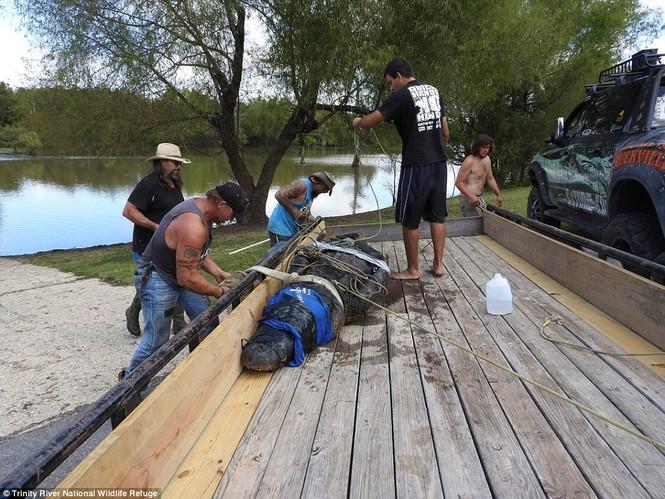 Bắt được cá sấu khổng lồ, dài 4,3m trong công viên - ảnh 5