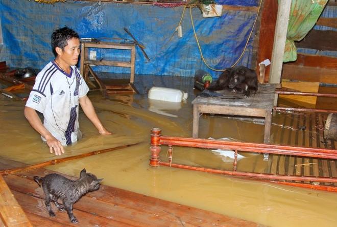 Nghìn người ở Hà Tĩnh chui mái nhà chờ nước rút - ảnh 4