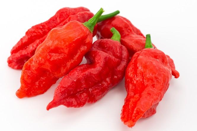 Thủng thực quản vì thử ăn ớt cay nhất thế giới - ảnh 1