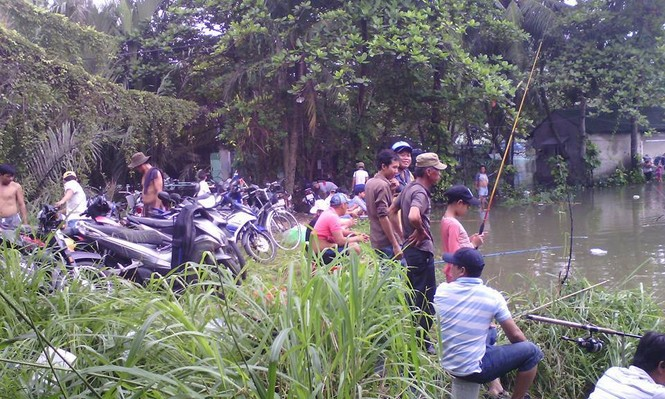 Triều cường gây ngập, người nuôi cá Sài Gòn khóc ròng - ảnh 4