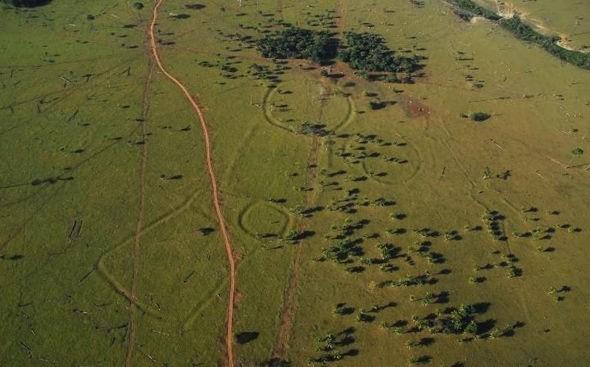 Phát hiện hàng trăm hình vẽ 2.000 năm tuổi trong rừng Amazon - ảnh 1