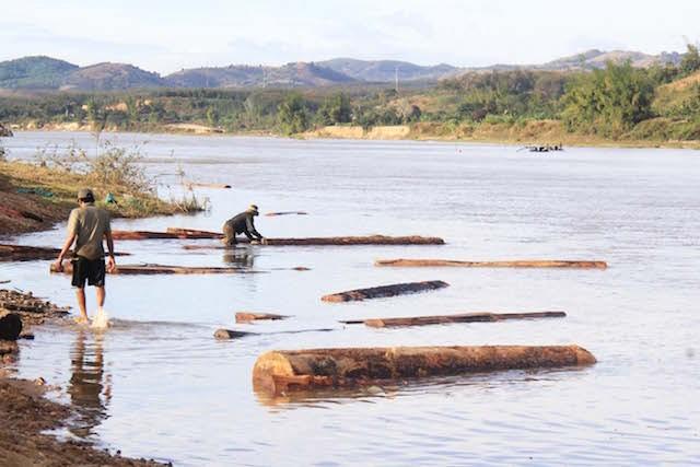 Kết quả vụ gỗ lậu áp sát thành phố Kon Tum - ảnh 1