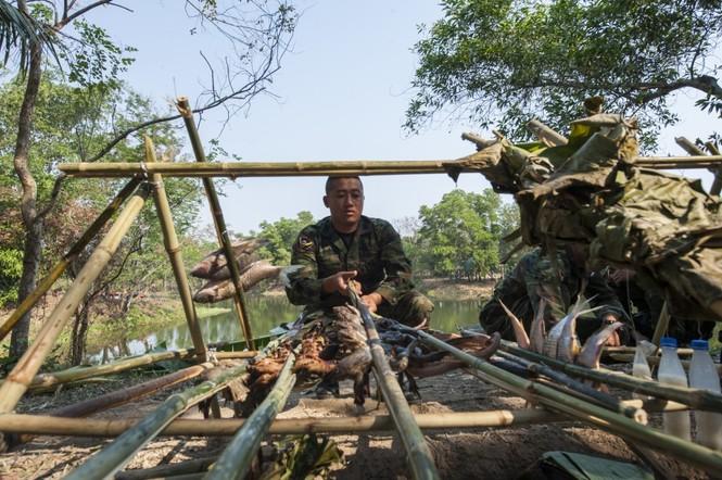 Lính Mỹ uống máu rắn, ăn bọ cạp sống ở Thái Lan - ảnh 7