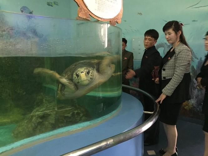 Nữ binh sĩ Triều Tiên gây chú ý với ảnh 'selfie' cùng phóng viên - ảnh 12