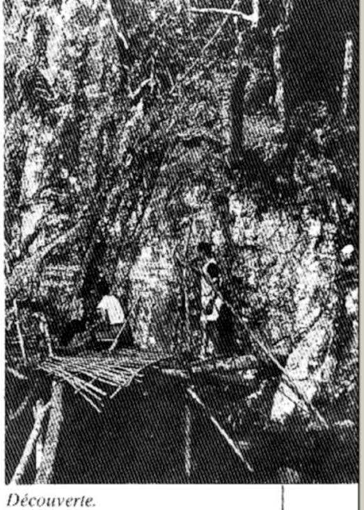 Kỳ bí văn tự cổ trên vách đá giữa đại ngàn Trường Sơn - ảnh 1