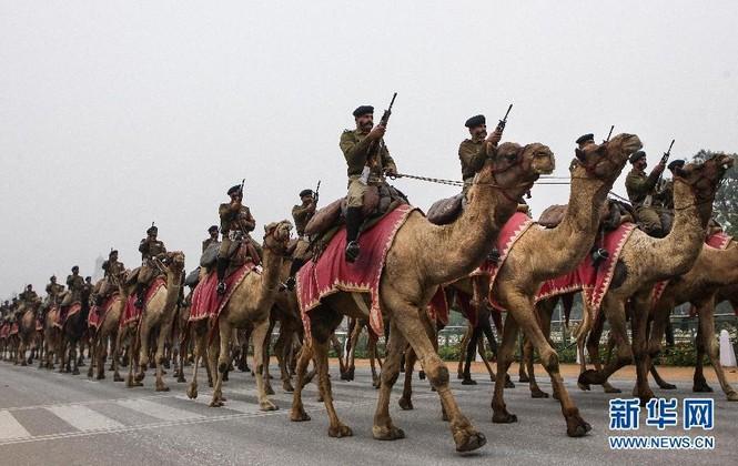 [ẢNH HIẾM] Chiến binh Ấn Độ cưỡi lạc đà diễu hành - ảnh 7