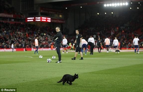 Liverpool vs M.U (0-0): Derby nước Anh chán ngán - ảnh 9