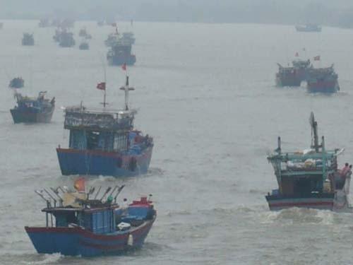 Trước giờ bão đổ bộ: Đê biển Bắc Trung Bộ chỉ chịu được bão cấp 10 - ảnh 6