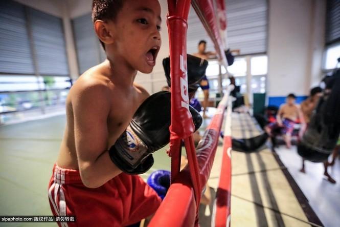 """Trẻ em """"bán"""" tuổi thơ tập luyện Muay Thái mong thoát nghèo - ảnh 2"""