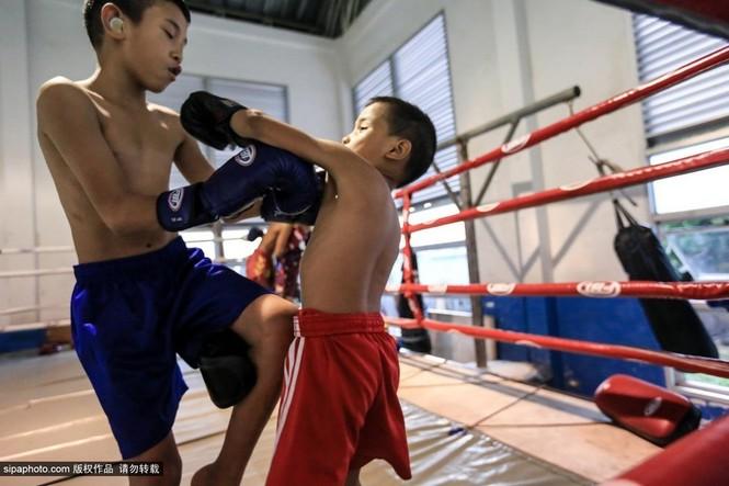 """Trẻ em """"bán"""" tuổi thơ tập luyện Muay Thái mong thoát nghèo - ảnh 4"""