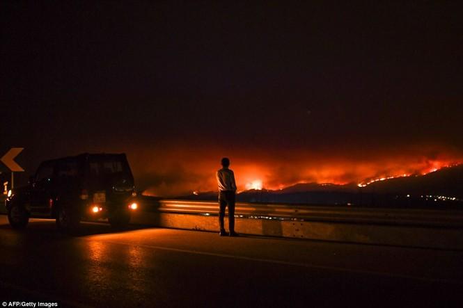 Thảm họa cháy rừng ở Bồ Đào Nha, 57 người thiệt mạng - ảnh 1