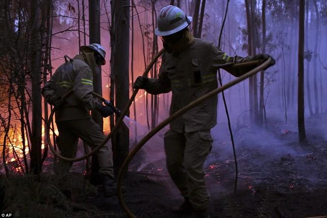 Thảm họa cháy rừng ở Bồ Đào Nha, 57 người thiệt mạng - ảnh 2