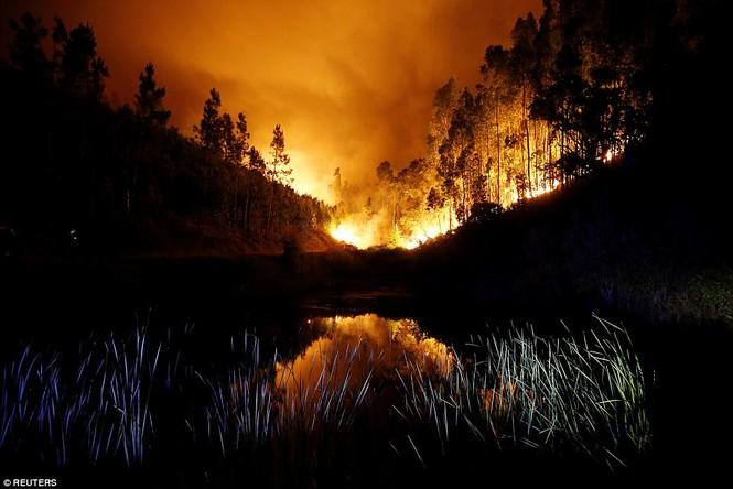 Thảm họa cháy rừng ở Bồ Đào Nha, 57 người thiệt mạng - ảnh 3