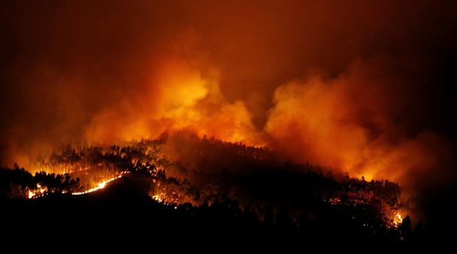 Thảm họa cháy rừng ở Bồ Đào Nha, 57 người thiệt mạng - ảnh 4