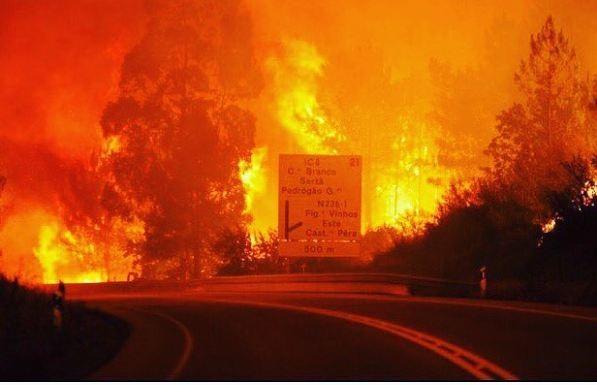 Thảm họa cháy rừng ở Bồ Đào Nha, 57 người thiệt mạng - ảnh 8