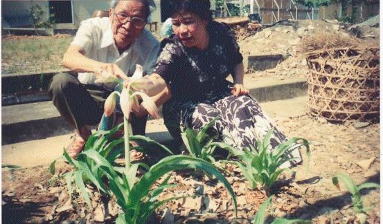 """Tiến sĩ-Dược sĩ Nguyễn Thị Ngọc Trâm: Trinh nữ hoàng cung đã """"ám ảnh"""" tôi - ảnh 1"""
