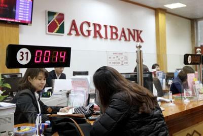 """Agribank khẳng định vai trò """"đầu tàu"""" về xây dựng nông thôn mới  - ảnh 1"""