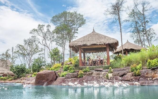 4 cung bậc cảm xúc tại vườn thú mở đầu tiên và duy nhất của Việt Nam - ảnh 1
