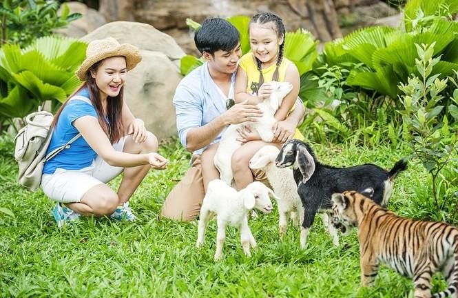 4 cung bậc cảm xúc tại vườn thú mở đầu tiên và duy nhất của Việt Nam - ảnh 6