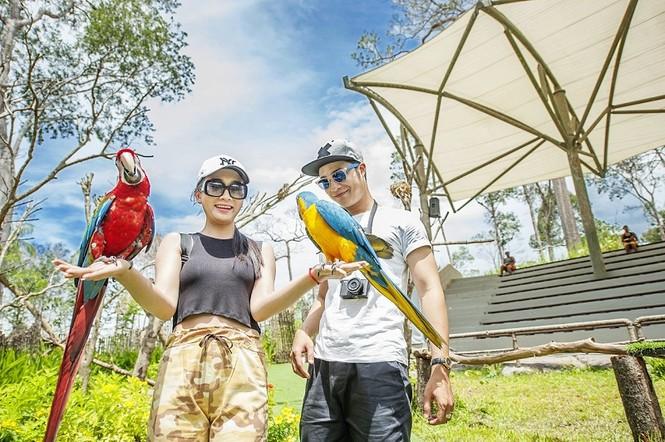 4 cung bậc cảm xúc tại vườn thú mở đầu tiên và duy nhất của Việt Nam - ảnh 2