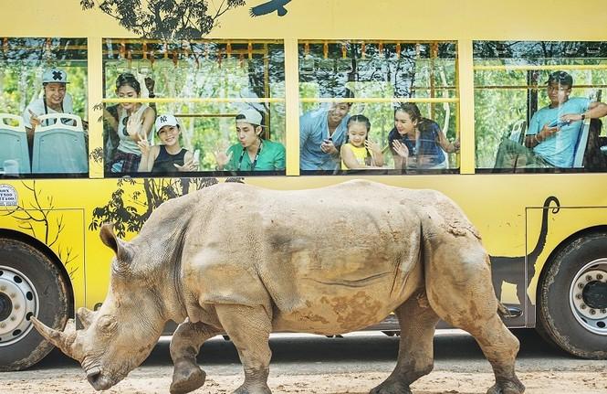 4 cung bậc cảm xúc tại vườn thú mở đầu tiên và duy nhất của Việt Nam - ảnh 4