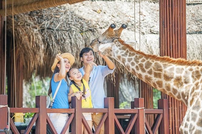 4 cung bậc cảm xúc tại vườn thú mở đầu tiên và duy nhất của Việt Nam - ảnh 8