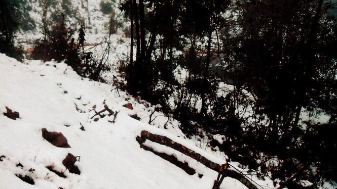 """Dân """"phượt"""" vượt đường lầy lội lên Y Tý ngắm tuyết - ảnh 2"""