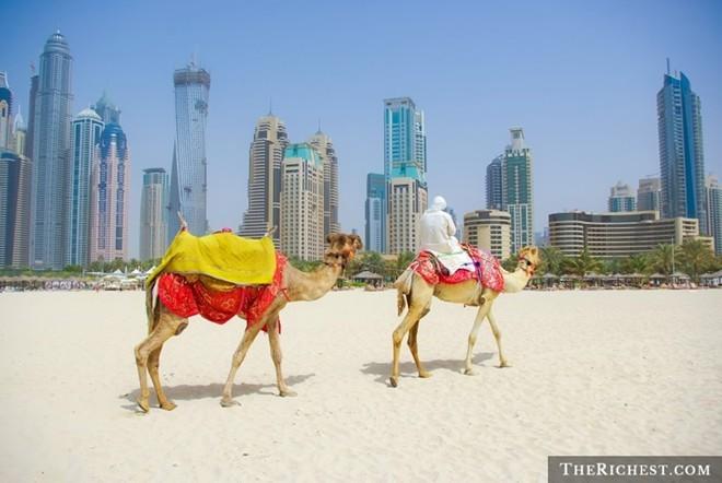 Những điều khó tin về thành phố giàu có Dubai - ảnh 5