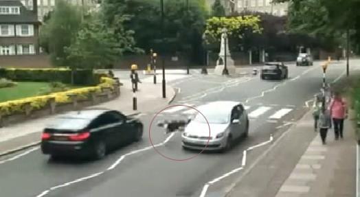 10 video 'hot': Đang lái máy xúc bị khối đá chục tấn đè bẹp - ảnh 4