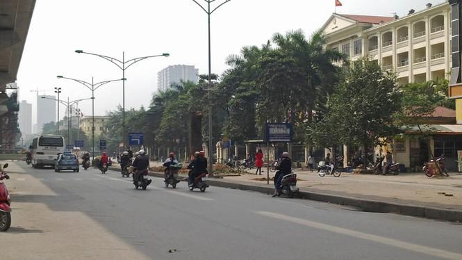 Hà Nội: Hàng loạt cây xà cừ cổ thụ tiếp tục bị đốn hạ - ảnh 11
